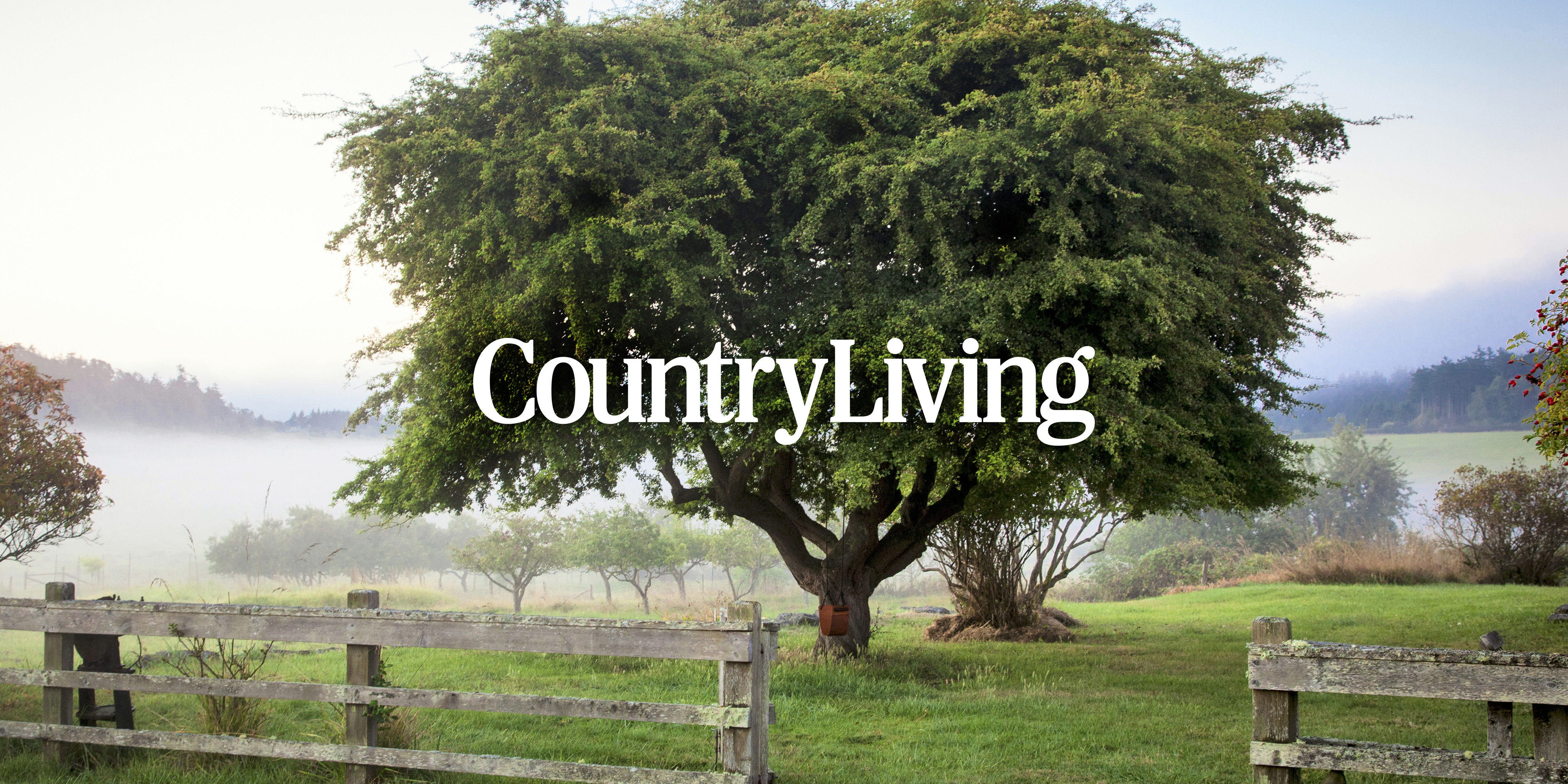 Country Living Customer Service : Contact Country Living - Contact CountryLiving.com