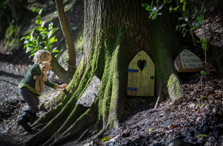 Fairy door crackdown in english woods outdoor living for Fairy pixie doors