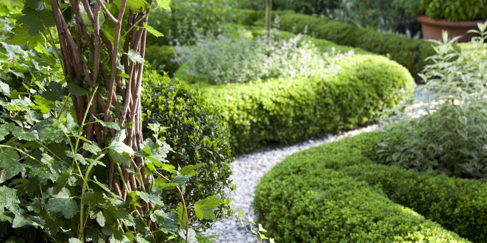 Charlotte Moss Garden Design Ideas