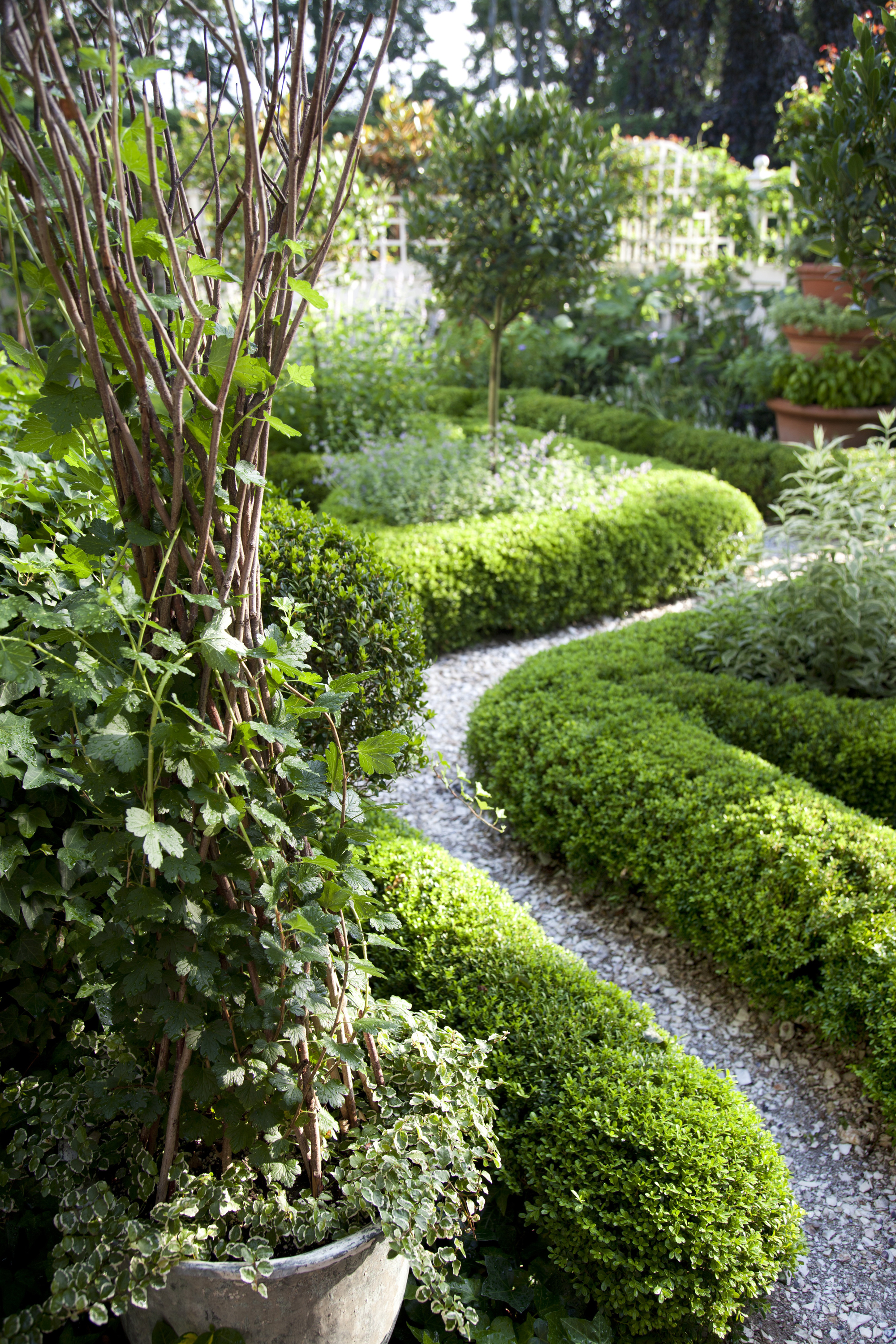Garden Ideas Landscaping 51 front yard and backyard landscaping ideas - landscaping designs