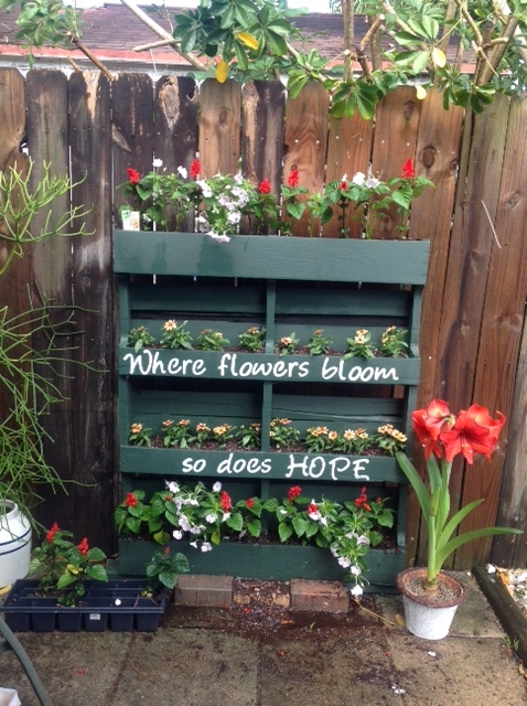 How to turn a shipping pallet into a vertical garden diy - Jardines verticales paso a paso ...