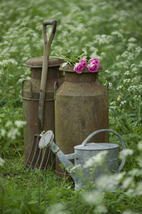 Nothing in your garden should look too polished. In that vein, it's best to use garden accessories that have a vintage feel, like a weathered pitchfork or an old galvanized steel watering can.<br />