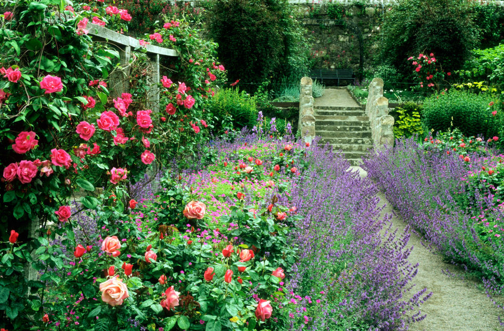 A cottage-style garden celebrates naturally occurring landscape features like hills and streams. Therefore, if your garden is built on a slope, work with it and install a small staircase, rather than eliminating the grade altogether, for a more cohesive look.<br />