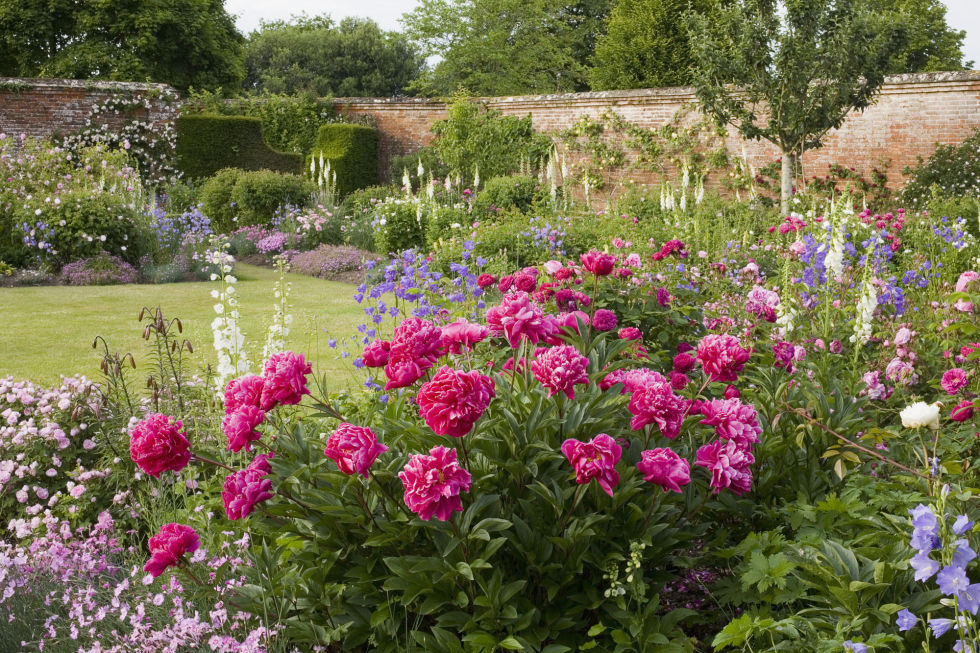 The signature of a cottage-style garden is an abundance of old-fashioned, petal-heavy flowers, like roses, bellflowers and peonies (pictured above). Bonus: Your garden will not only look beautiful, it will smell amazing, too.<br />