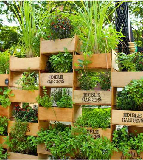Create a vertical planter pyramid! Keep the structure from becoming too precarious by reinforcing the stacked crates with wooden planks.&lt;br /&gt;&lt;br /&gt;<br /> See more at Little Green Dot.&lt;br /&gt;&lt;br /&gt;<br />