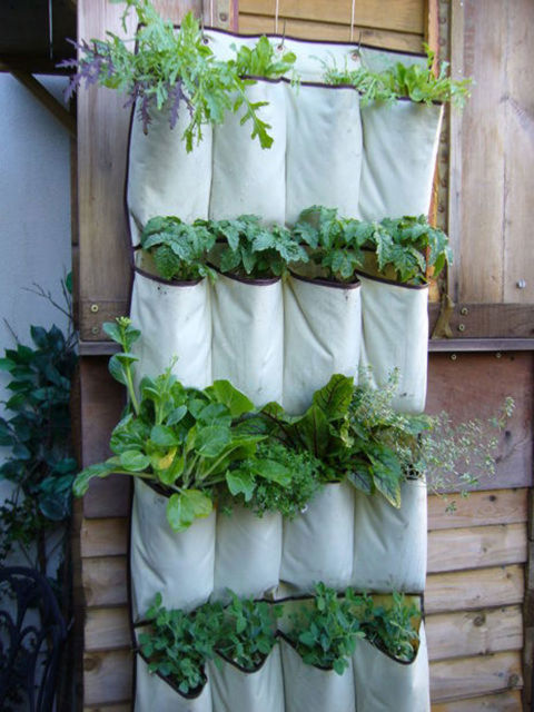 A hanging shoe organizer doubles perfectly as a vertical garden: its pockets are the ideal size for growing individual plants and herbs.&lt;br /&gt;&lt;br /&gt;<br /> Get the tutorial at Instructables.&lt;br /&gt;&lt;br /&gt;<br />