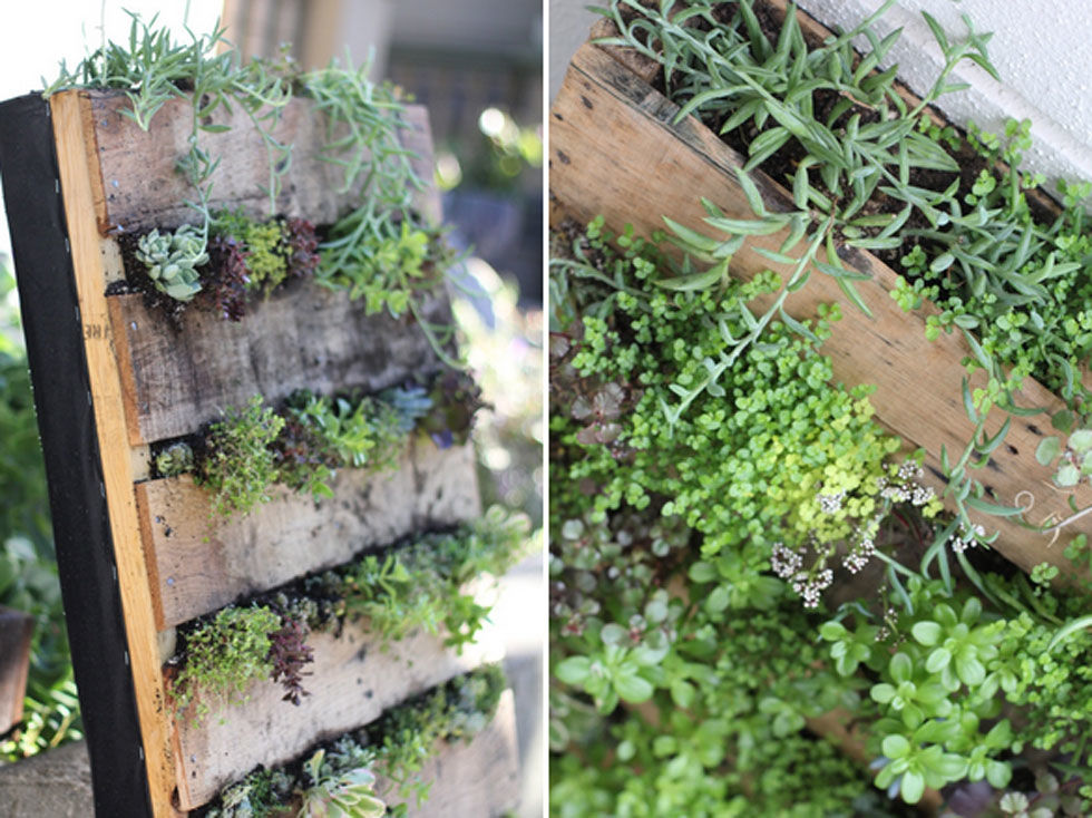 The most creative ways to plant a vertical garden for Vertical pallet garden