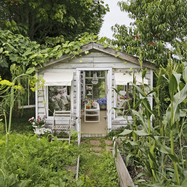 clean out your old backyard shedor use a kit to build a new one