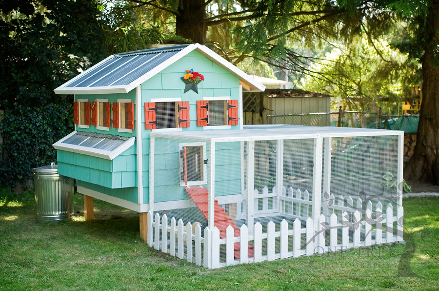 colorful and homey - Chicken Coop Design Ideas