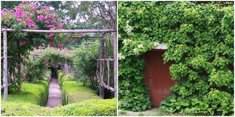 Private Gardens Secret Garden Landscaping Ideas