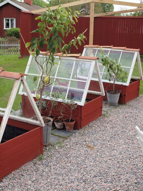 15 DIY Backyard Greenhouses - How to Make a Greenhouse