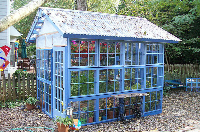 Backyard Greenhouse Ideas backyard reusable material chic homemade greenhousebackyard Blue And Bold