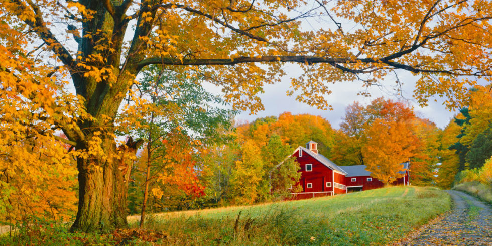 Beautiful Autumn Barn Photos - Fall Foliage Pictures