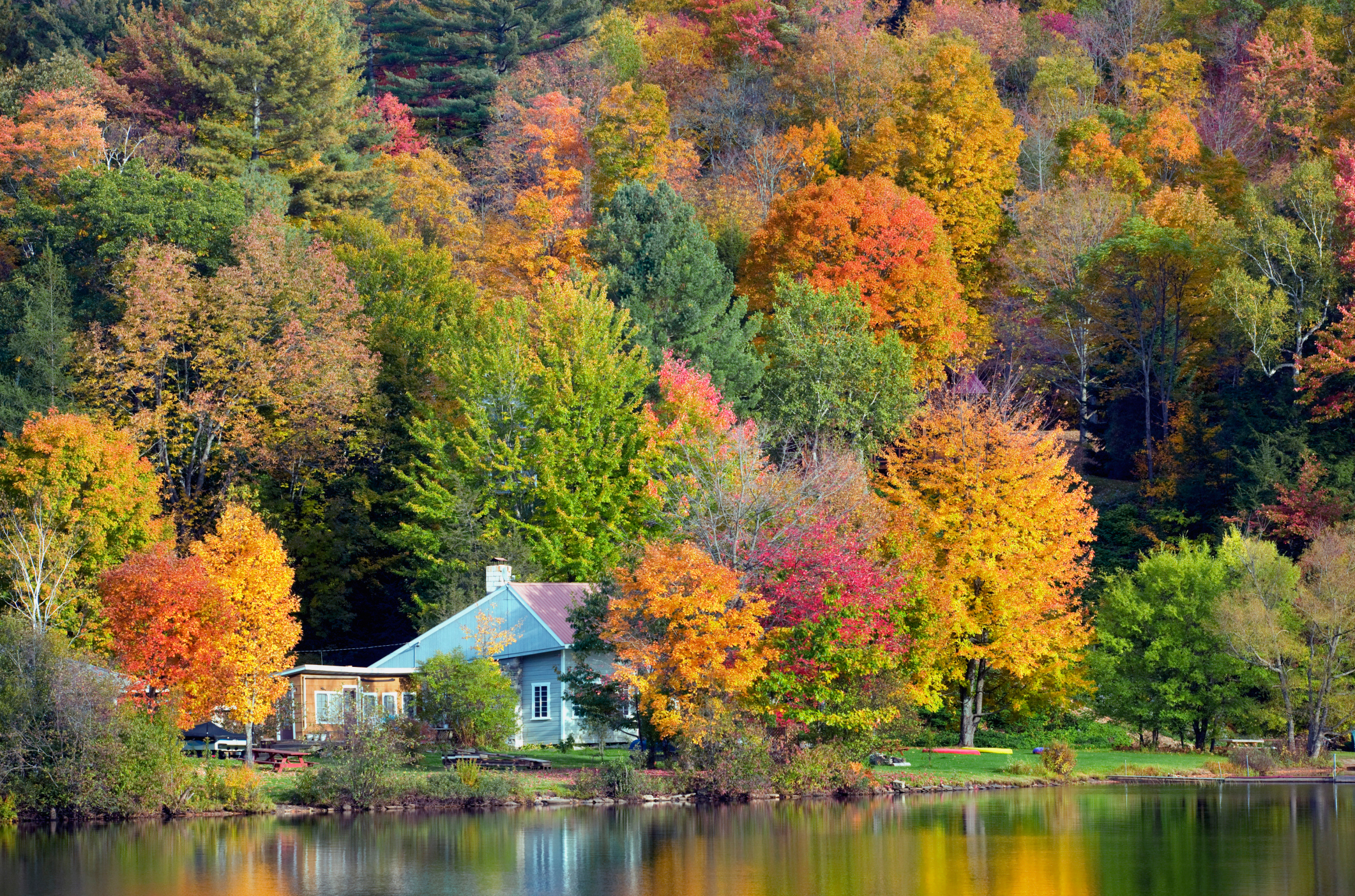 Most beautiful fall trees images for Best fall destinations in the us