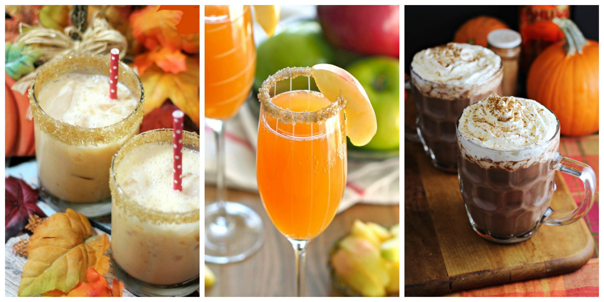 25 Best Fall Cocktails Drink Recipes Perfect For Autumn