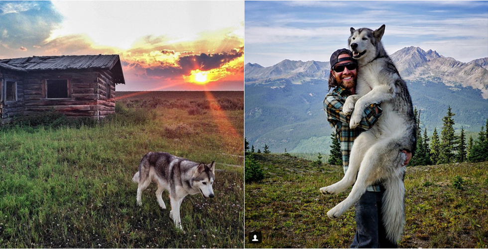 Man Takes His Wolfdog On Epic Adventures Because Animals