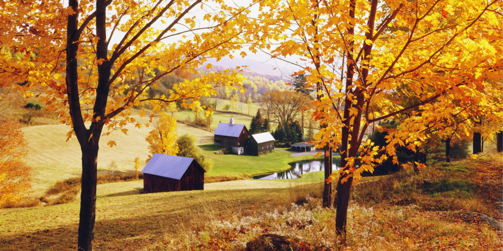Fall In The Country Why Fall Is The Best Season