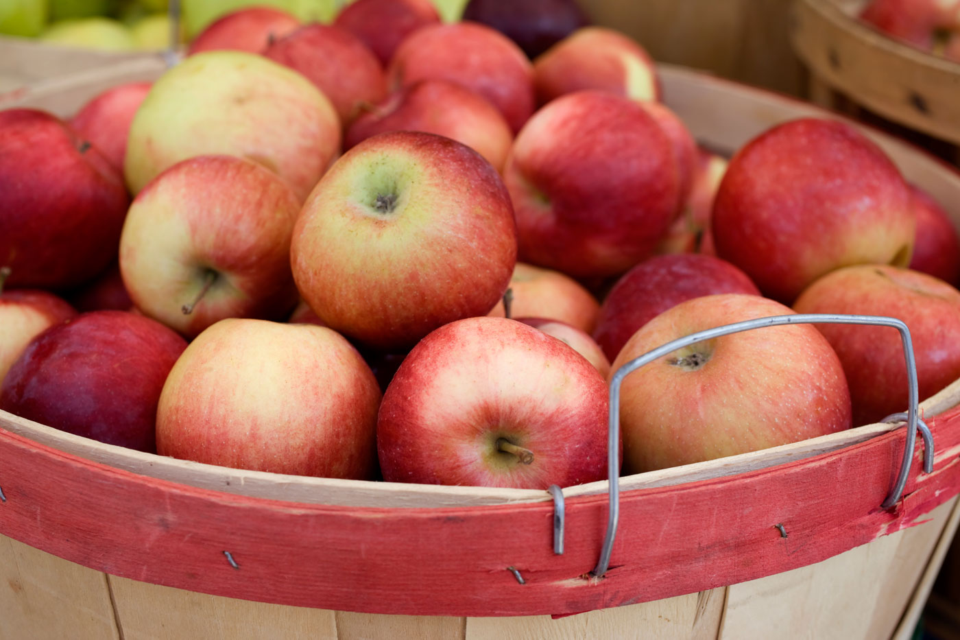 best apple picking places near me fall apple orchard events