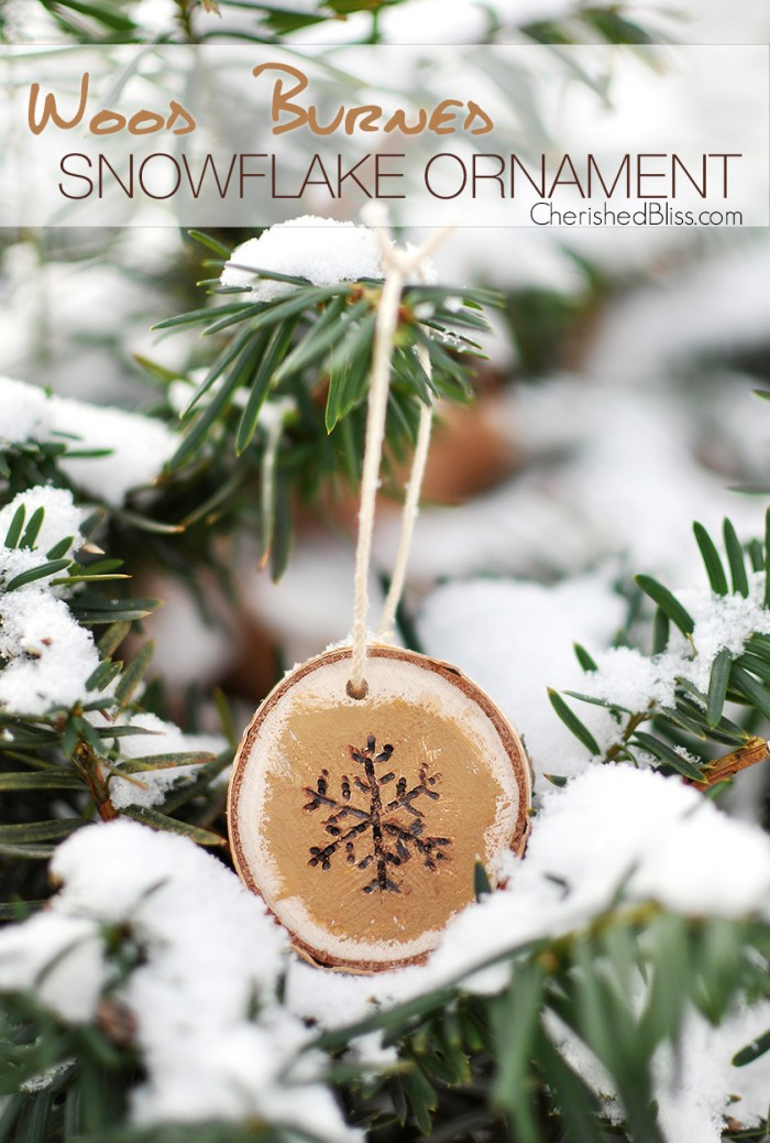 48 Homemade Christmas Ornaments - DIY Crafts with ...