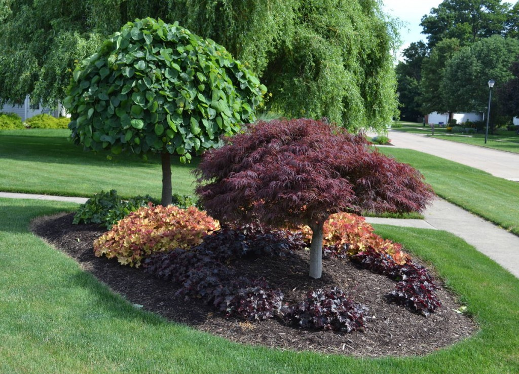 10 cheap landscaping ideas budget friendly landscape tips for Garden sectioning ideas