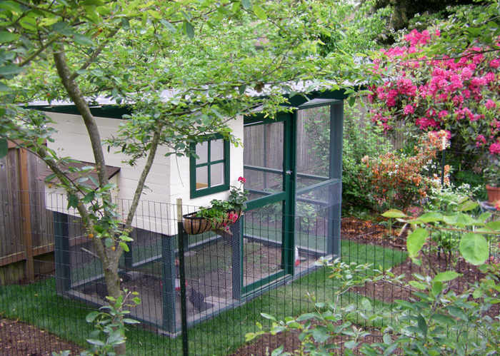 Chicken Coop Ideas Design chicken coop trench wire chickens pinterest backyards parrots and backyard chicken coops 22 Diy Chicken Coops You Need In Your Backyard Diy Chicken Coop Plans