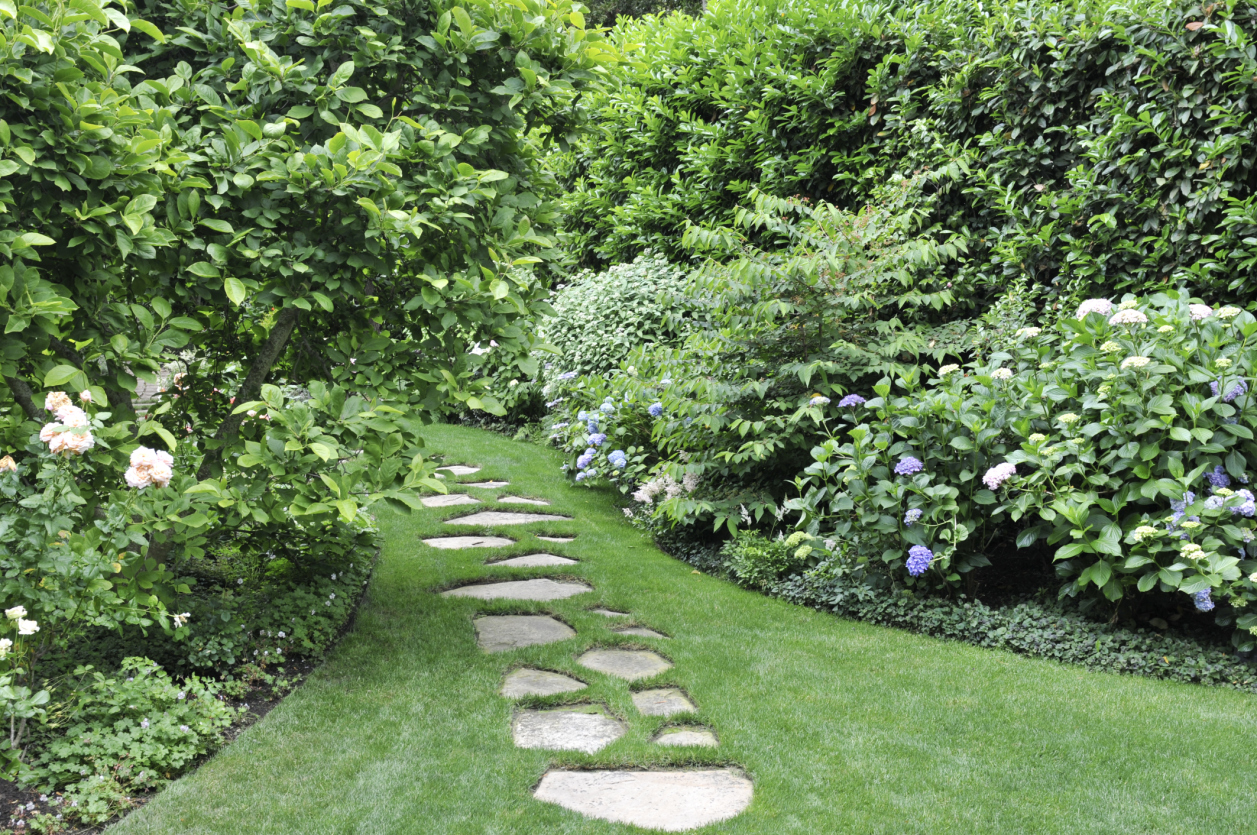 12 cheap landscaping ideas budget friendly landscape for Best back garden designs
