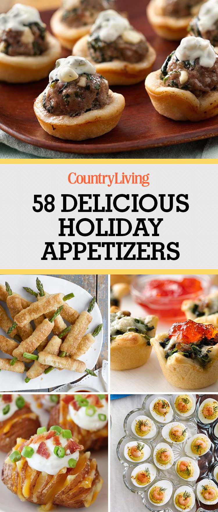 60+ Easy Thanksgiving And Christmas Appetizer Recipes