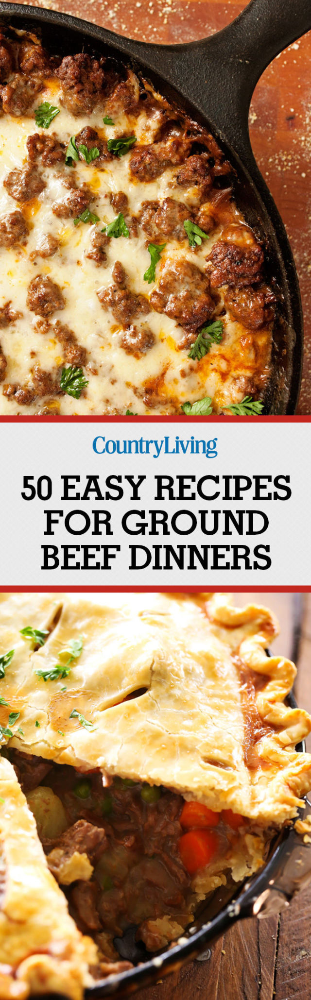 Great dinner recipes easy