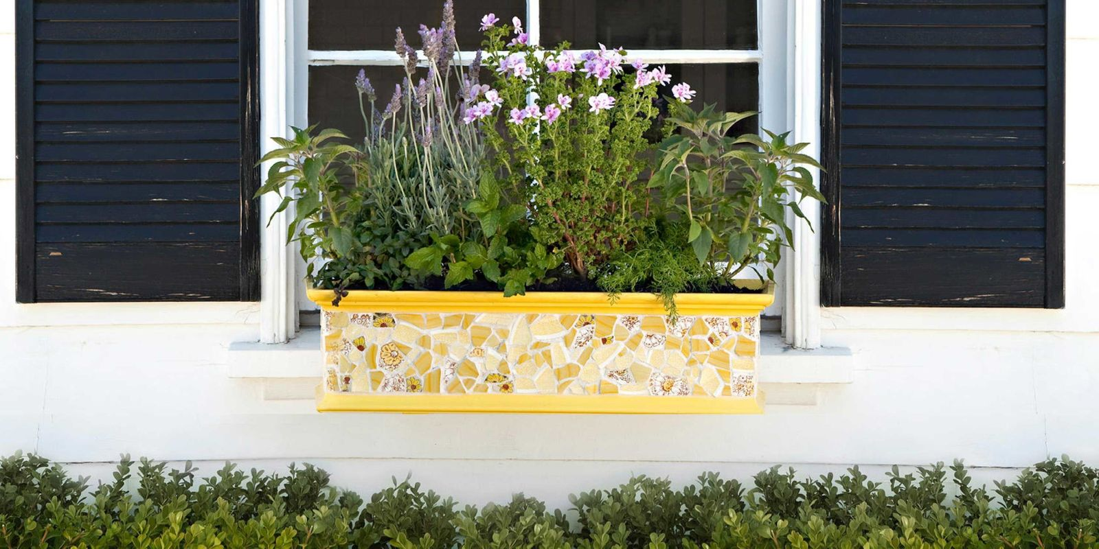 18 fun gardening ideas for your window boxes window box for Flower garden box ideas