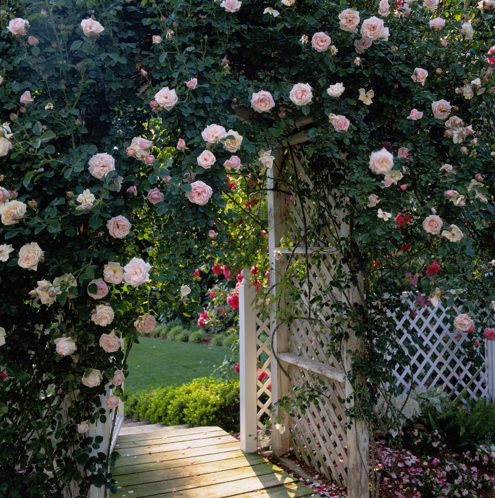 Flower garden pictures ideas - Flower Garden Pictures Ideas 49