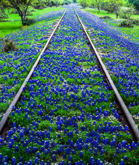 Reasons To Visit Hill Country Texas