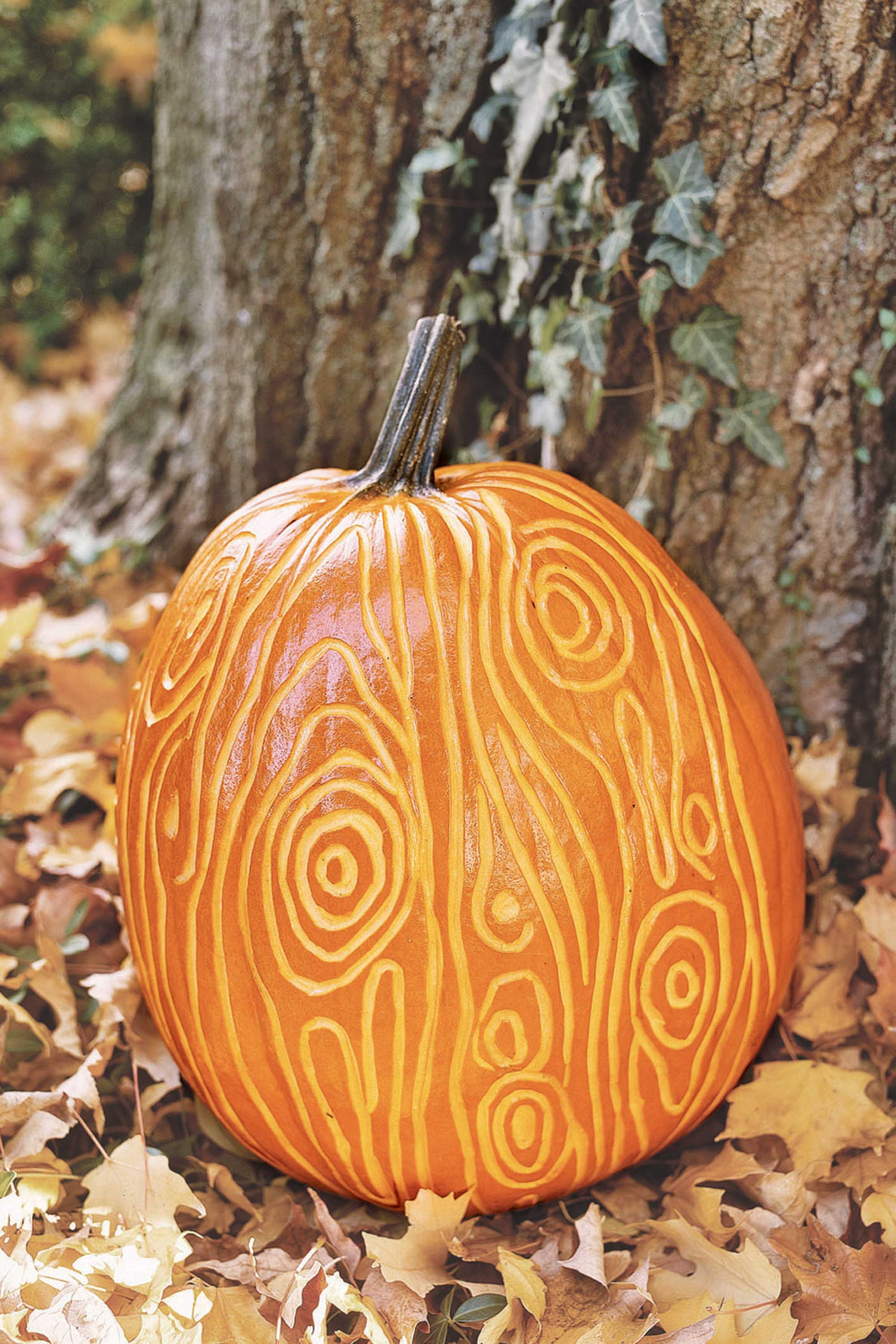 Pumpkin Carving 50 Easy Pumpkin Carving Ideas 2017 Cool Patterns And Designs For