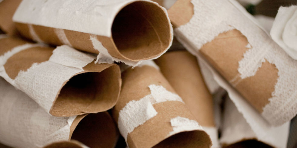 Here S Why You Should Save Your Toilet Paper Tubes For