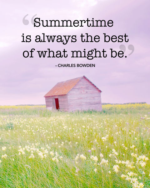 7 Summer Quotes  7 Summer Quotes