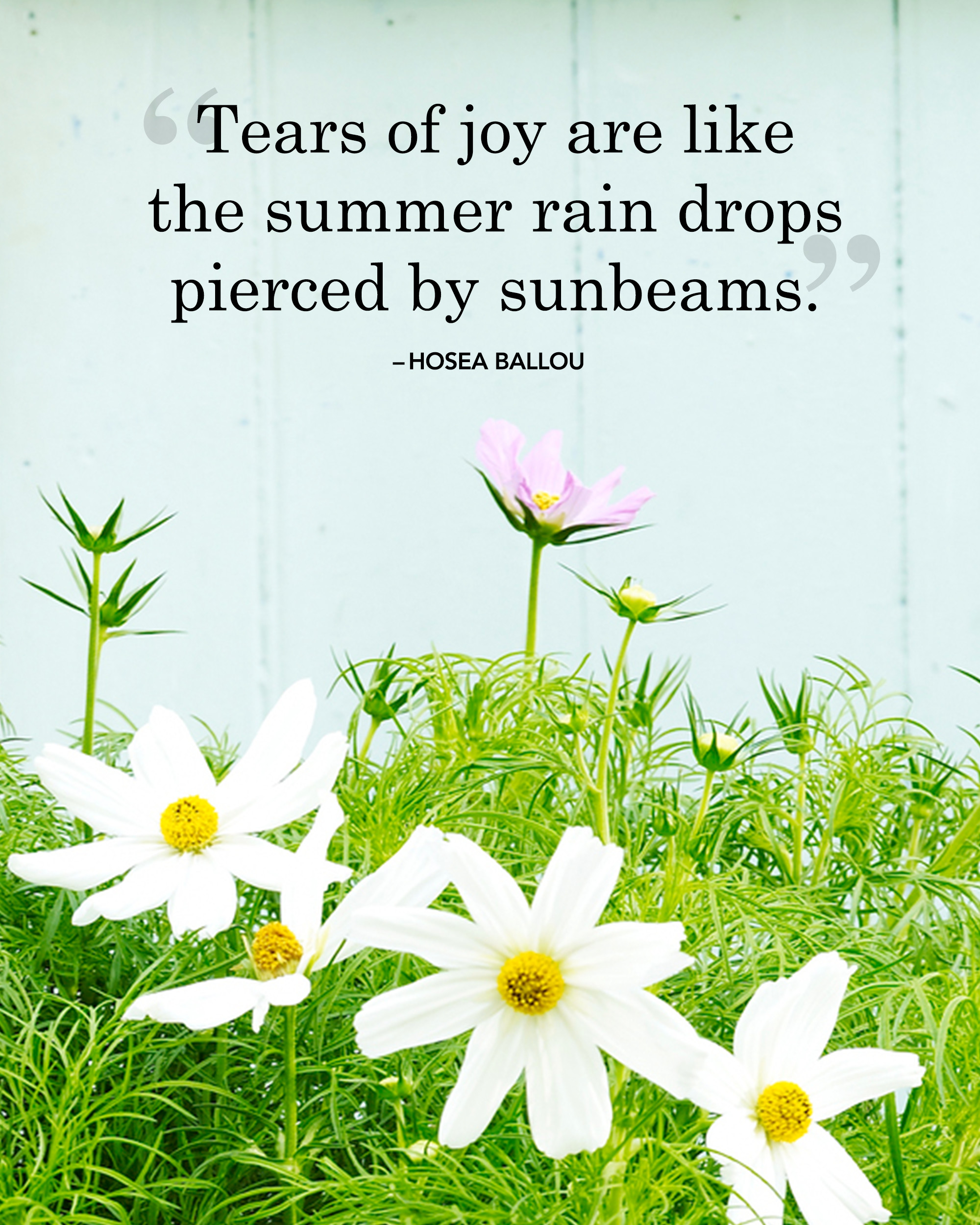 16 best summer quotes and sayings inspirational quotes