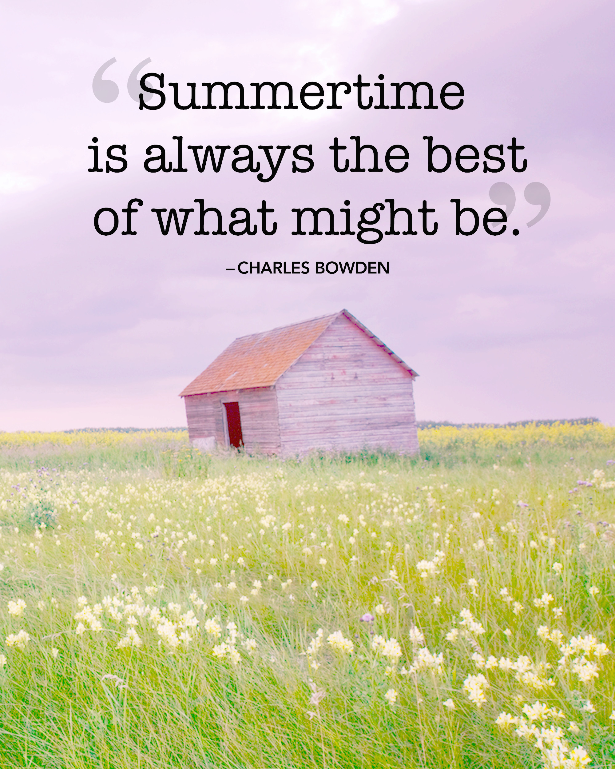 16 Best Summer Quotes And Sayings