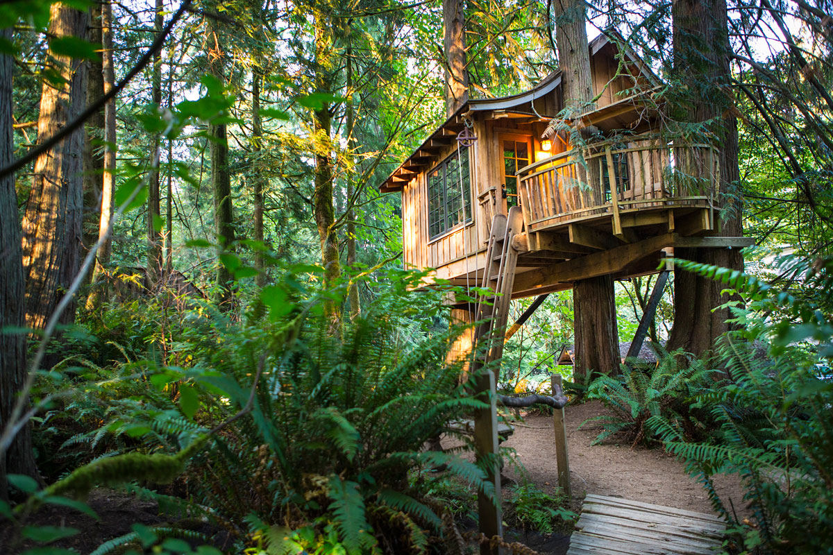 2017 01 tree house rentals in north carolina - 2017 01 Tree House Rentals In North Carolina 1