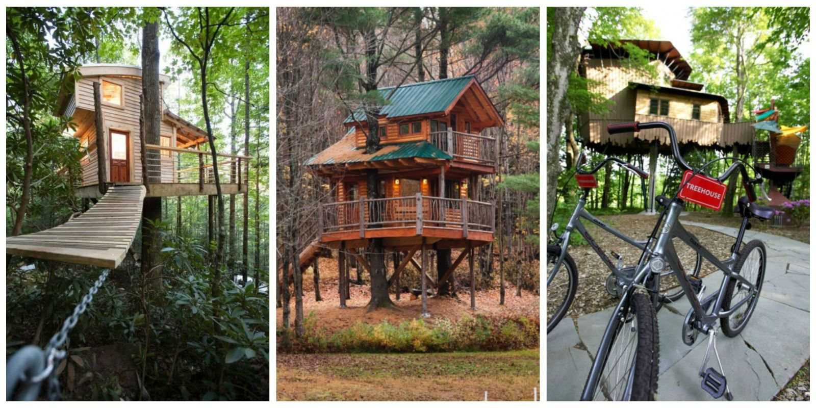 2017 01 tree house rentals in north carolina - 2017 01 Tree House Rentals In North Carolina 20