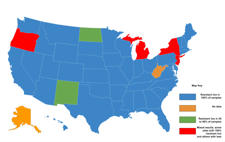 Treatment Resistant Lice Found In States Study Reveals The - Spread on a map us