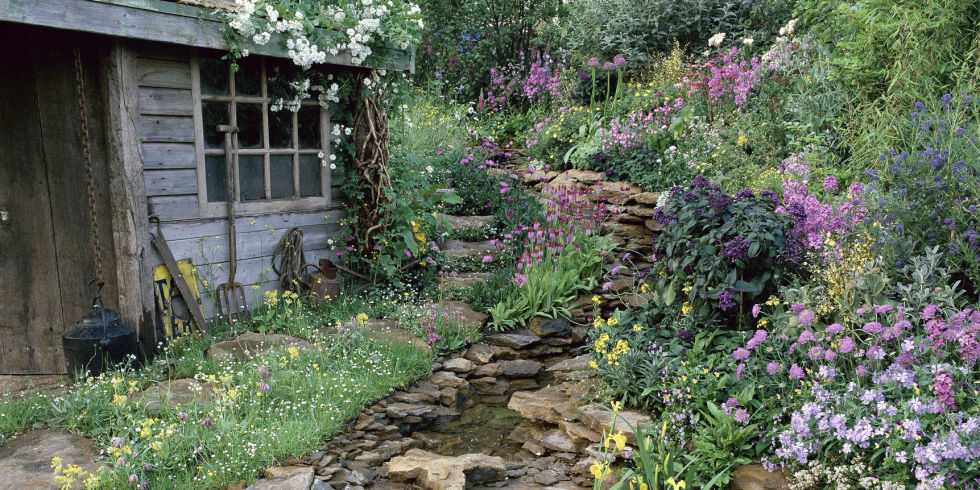 Gardening connoisseur and children's book author Chris Young shares his  best advice for creating an eye-catching rock garden.