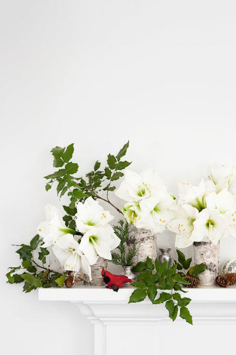Country farmhouse christmas white christmas decor ideas for Amaryllis christmas decoration