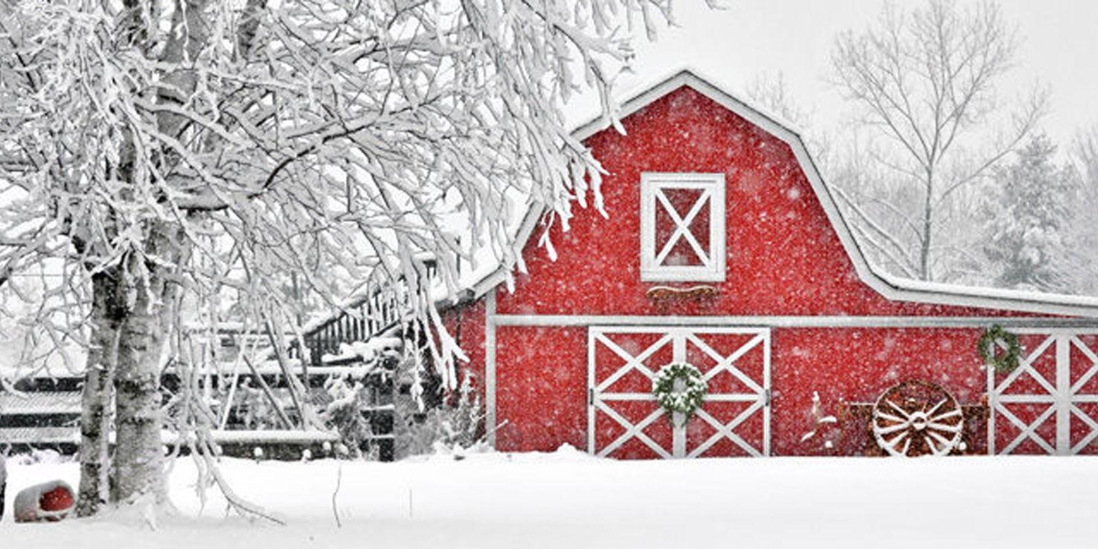 Beautiful Winter Barn Photos
