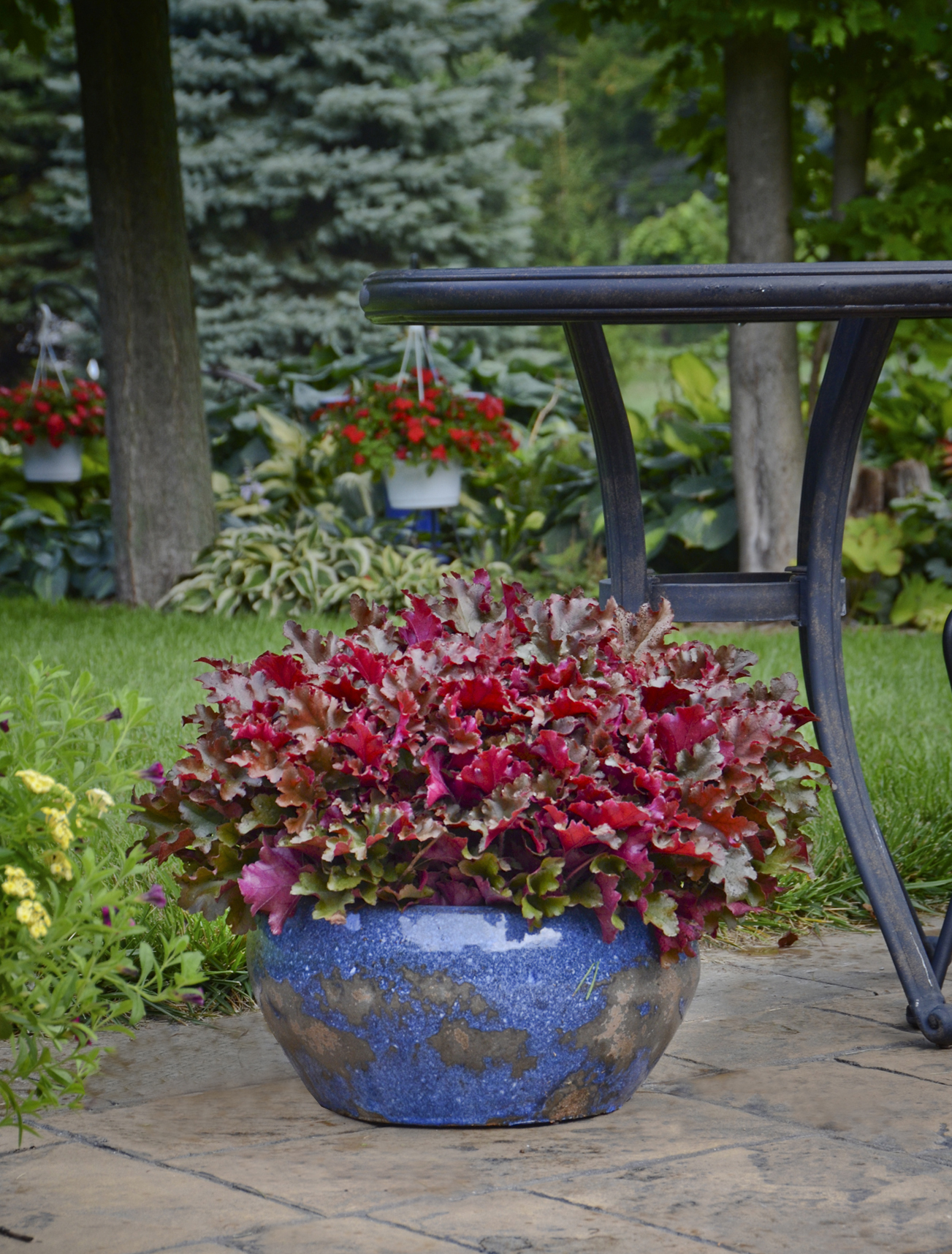 10 Container Gardening Ideas Best Plants For Containers