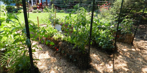 Here 39 s why you should really be adding straw bales to your garden for Straw bale gardening joel karsten