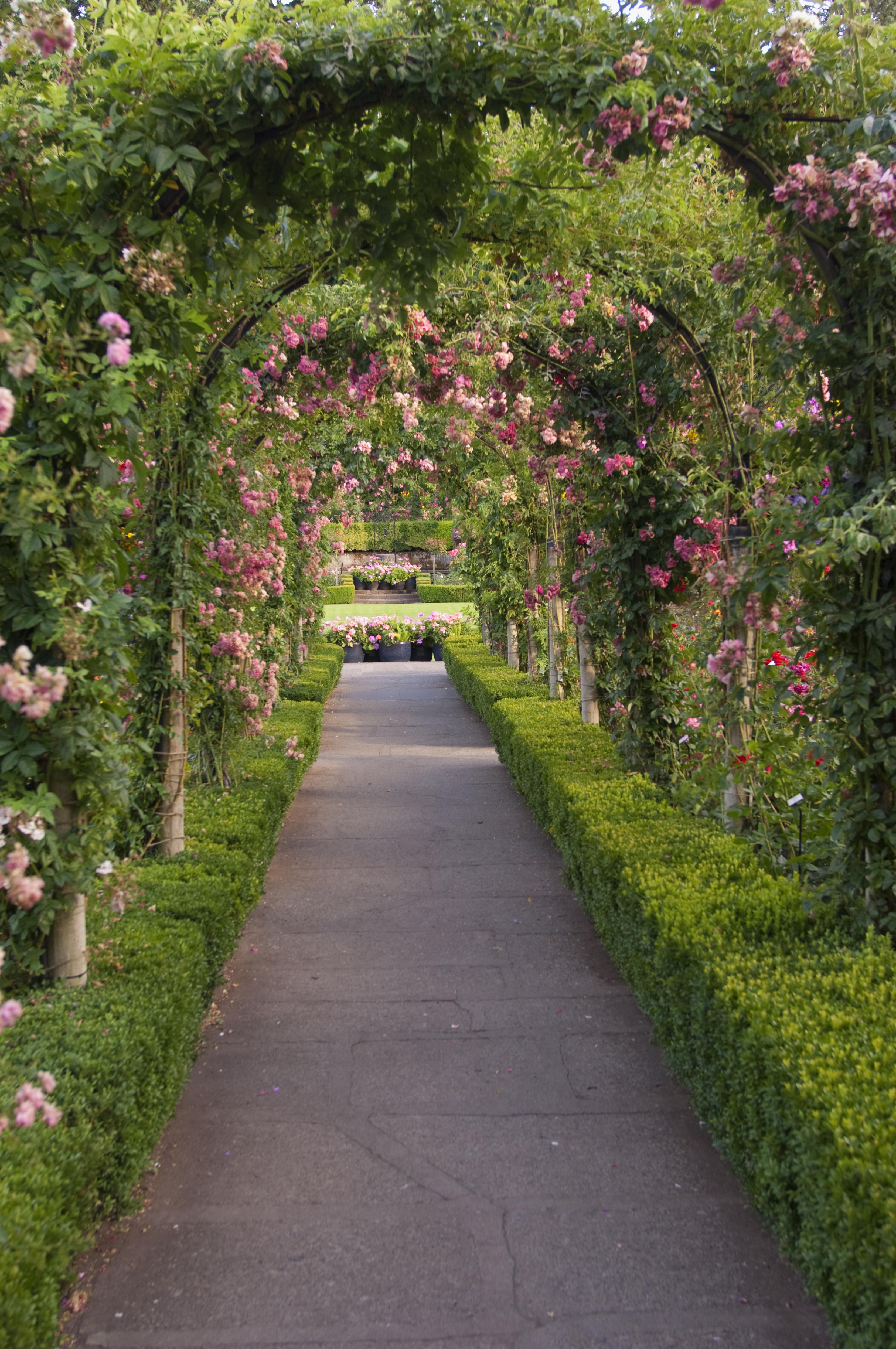 16 free garden plans garden design ideas - Garden Design Triangular Plot