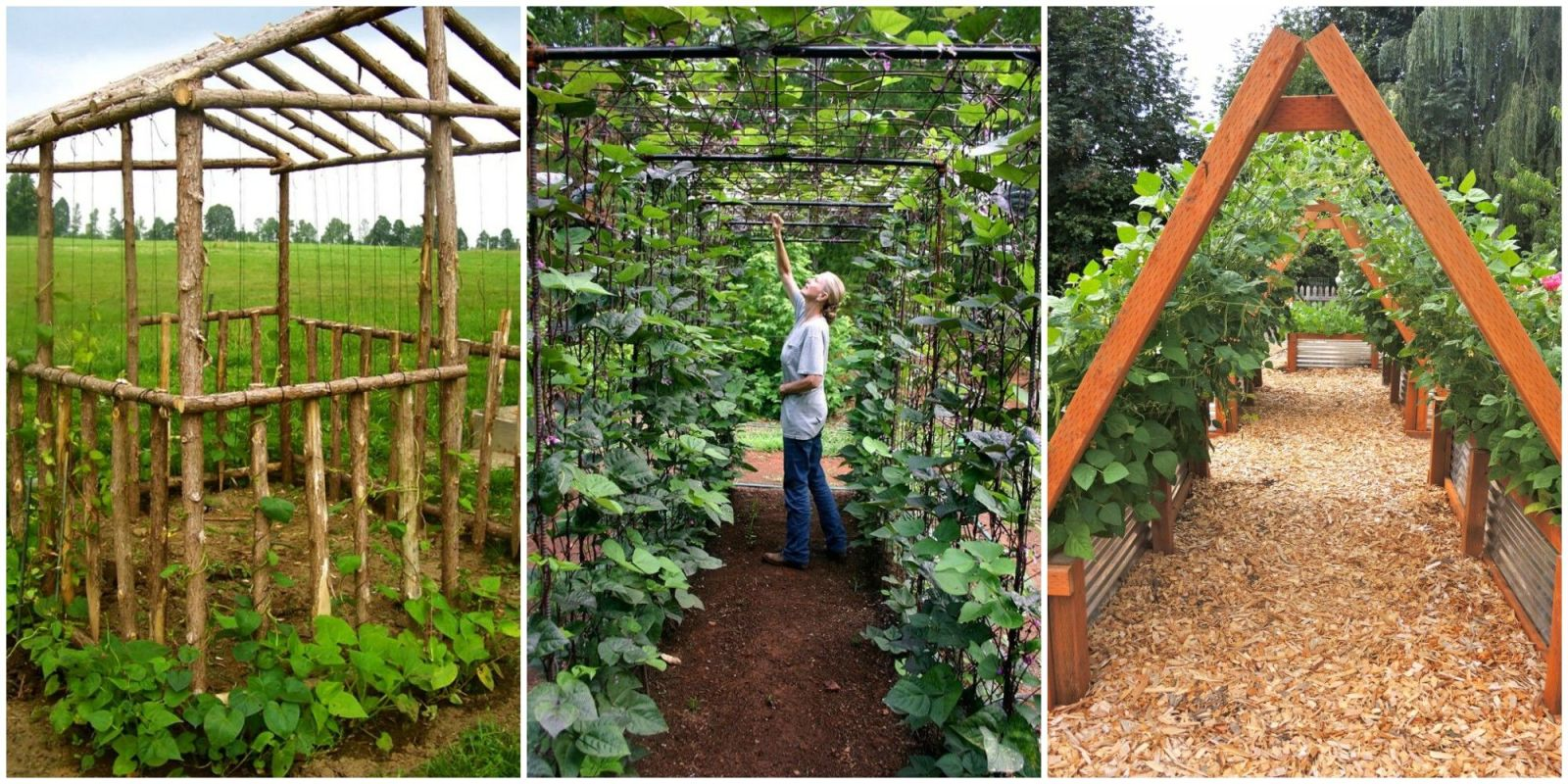 Garden Ideas Small Landscape Gardens Pictures Gallery: Upgrade Your Garden With A DIY Bean House This Spring