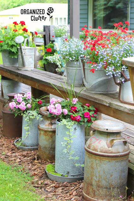 Need an easy way to add color to an overlooked corner your backyard? Old milks cans, chicken feeders, and galvanized mop buckets are just itching for new life as planters.  Tour the rest of this creative garden.