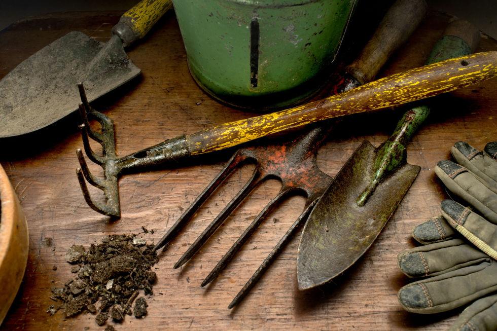 Best Gardening Accessories