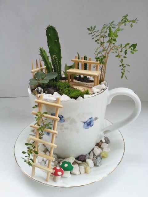 Teacup Fairy Gardens - Pinterest Fairy Gardens