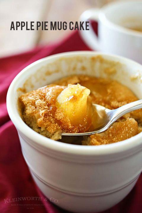 20 Easy Mug Cake Recipes Microwave Desserts In A Mug